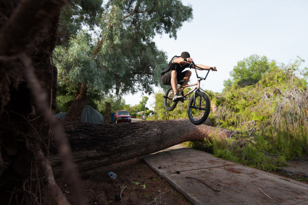 Eric Bahaman, 29, jumps his bike over a tree that fell down in the front yard of his Tempe home on Tuesday, Sept. 1, 2015. The previous night's rain storm knocked the tree down.
